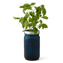 Load image into Gallery viewer, Indoor Basil Grow Kit