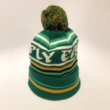Load image into Gallery viewer, Fly Eagles Fly Beanie