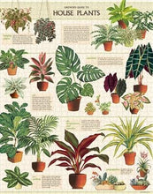 Load image into Gallery viewer, House Plants 1000 Piece Puzzle