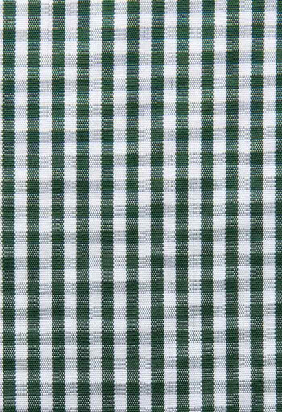 Onex Green Check Shirt Artigiano Fabric