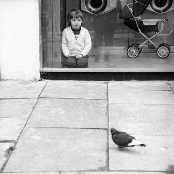 Boy watching a pigeon in Boreham Wood c.1965
