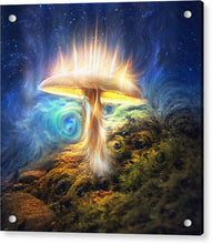 Load image into Gallery viewer, Sacred Mushroom - Acrylic Print