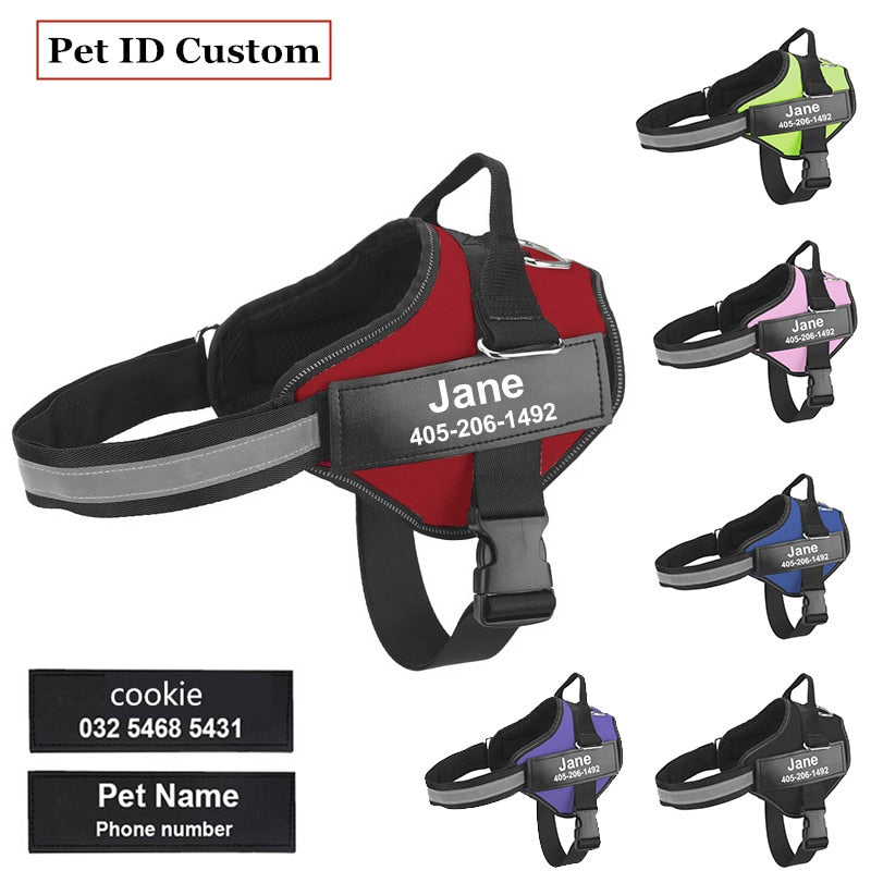 Dog Harness with Personalized Name