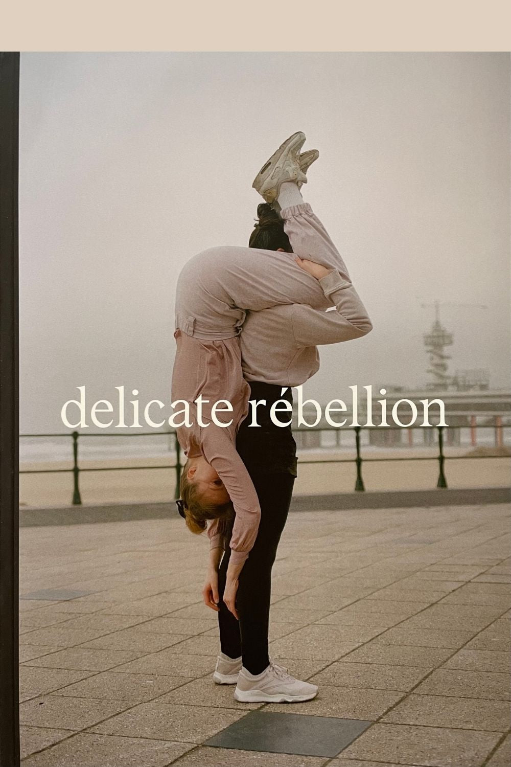 Front cover of Delicate Rebellion magazine Issue 2 on the Pics & Ink shop