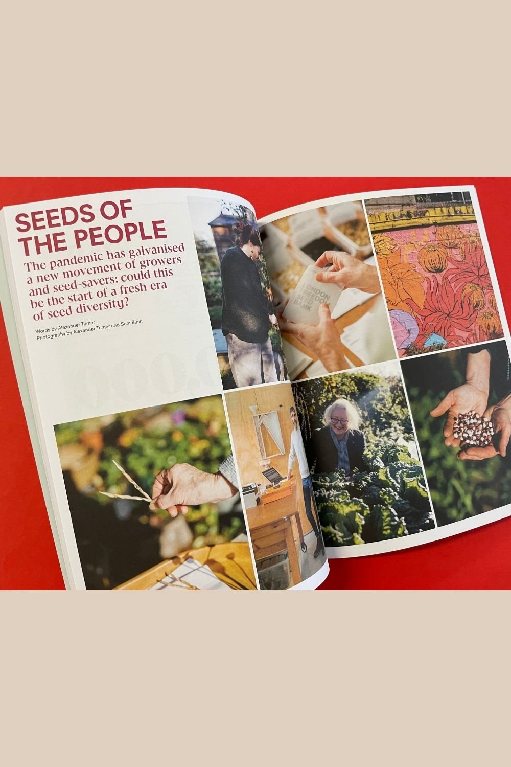 Positive News magazine - Seeds of change feature