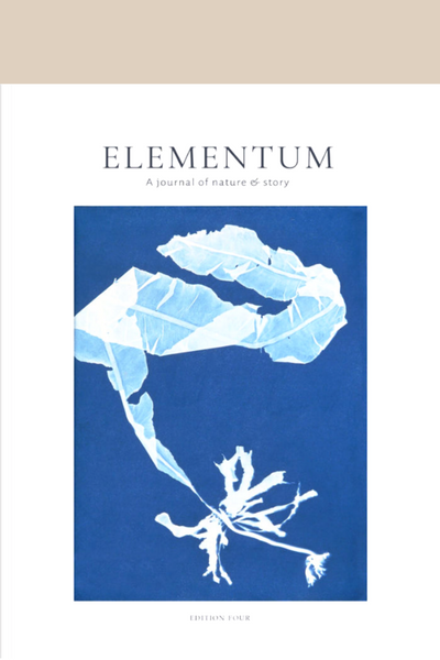 Elementum Issue 4
