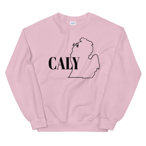 Pink Caly Michigan Unisex Sweatshirt