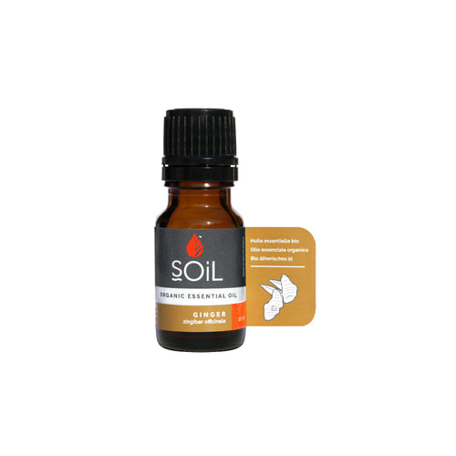 SOiL Organic Ginger Essential Oil 10ml-Just Beauty Organics Store