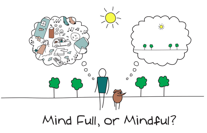 What the hell is mindfulness?