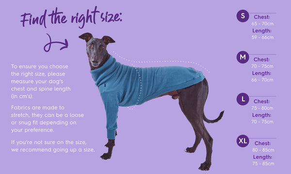 Kazoo Greyhound jumpers size guide