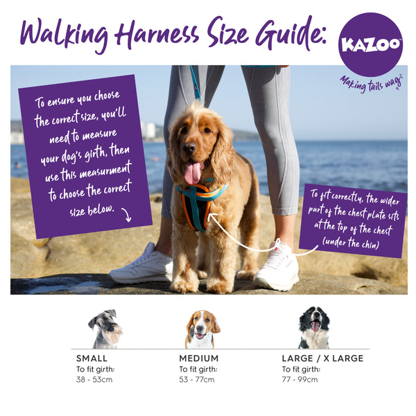 Kazoo Walking harness size guide