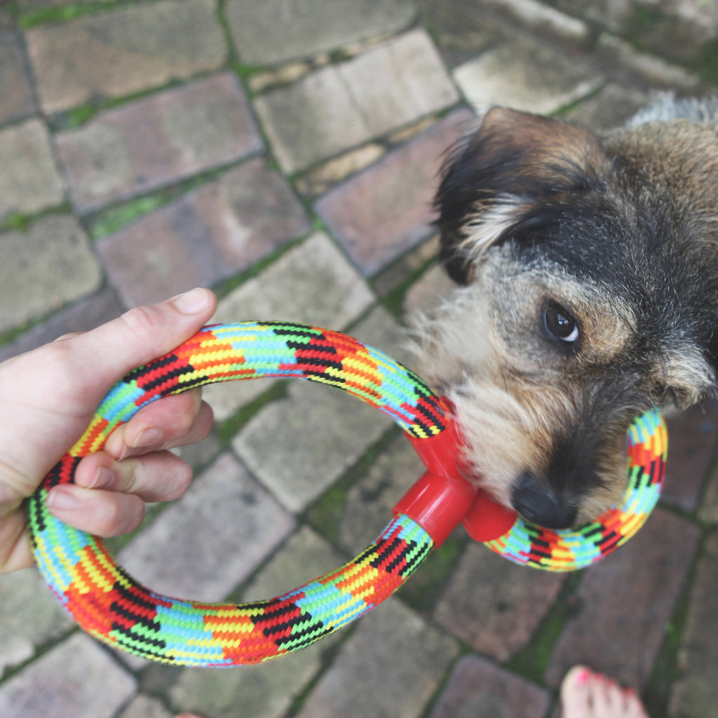 Braided Rope Figure 8 Tug - Kazoo Pet Co