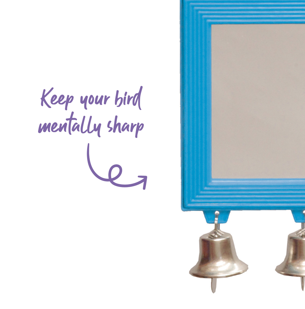 Rectangular Mirror with Bell - Kazoo Pet Co