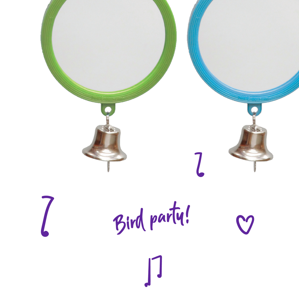 Round Mirror with Bell - Small - Kazoo Pet Co