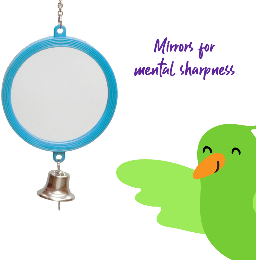 Round Mirror with Bell - Large - Kazoo Pet Co