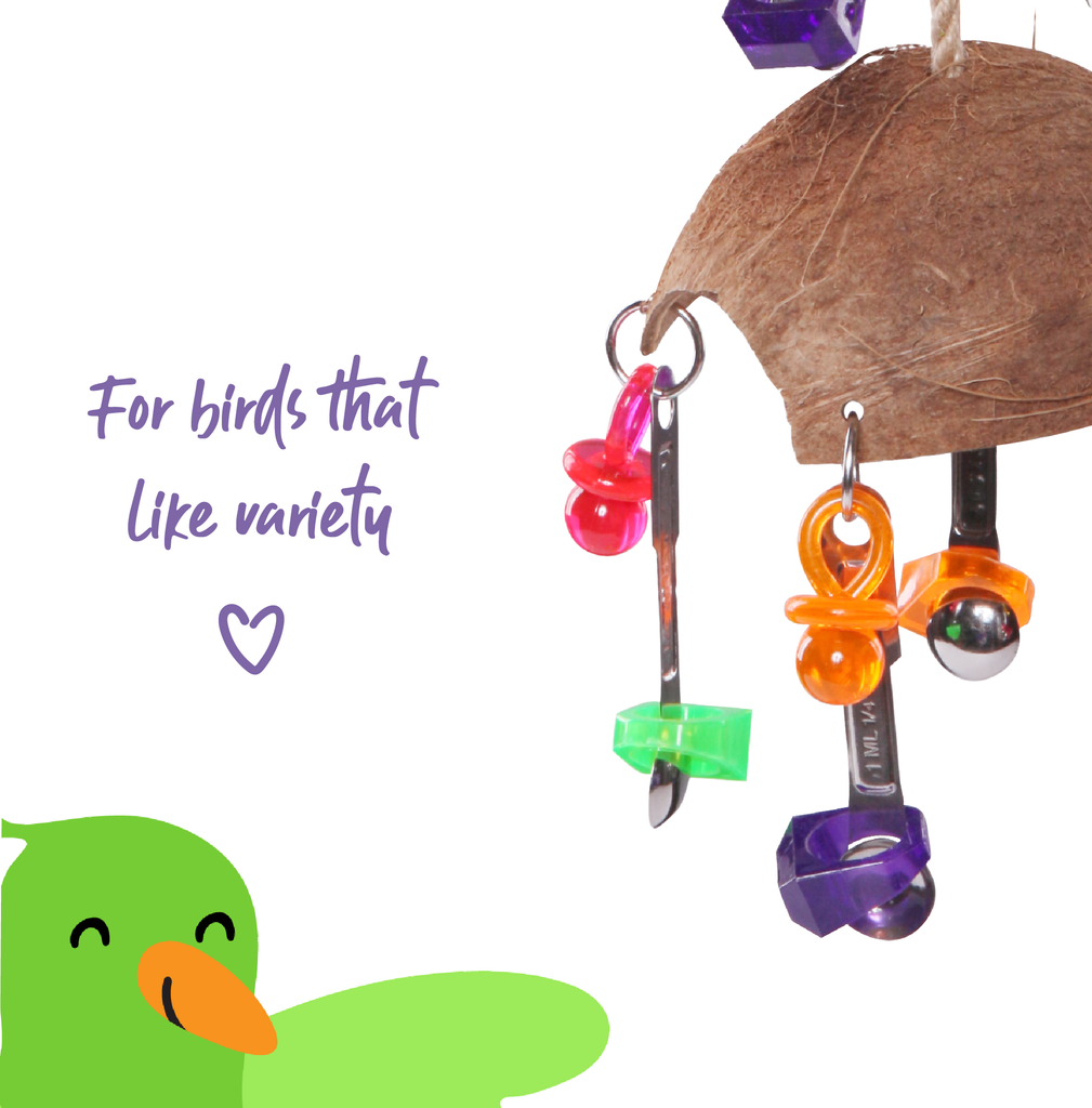 Split Coconut  with Toys and Spoons - Kazoo Pet Co