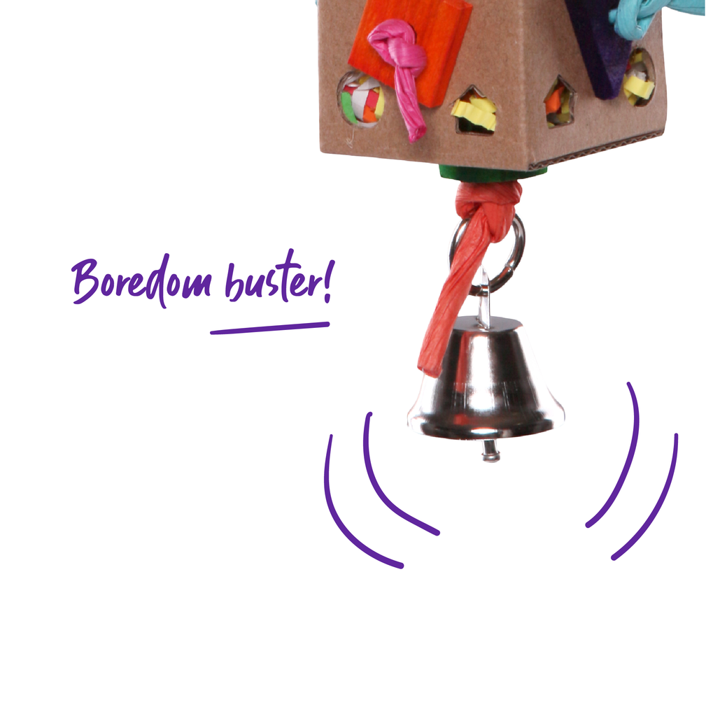 Cardboard Activity Box with Bell - Kazoo Pet Co