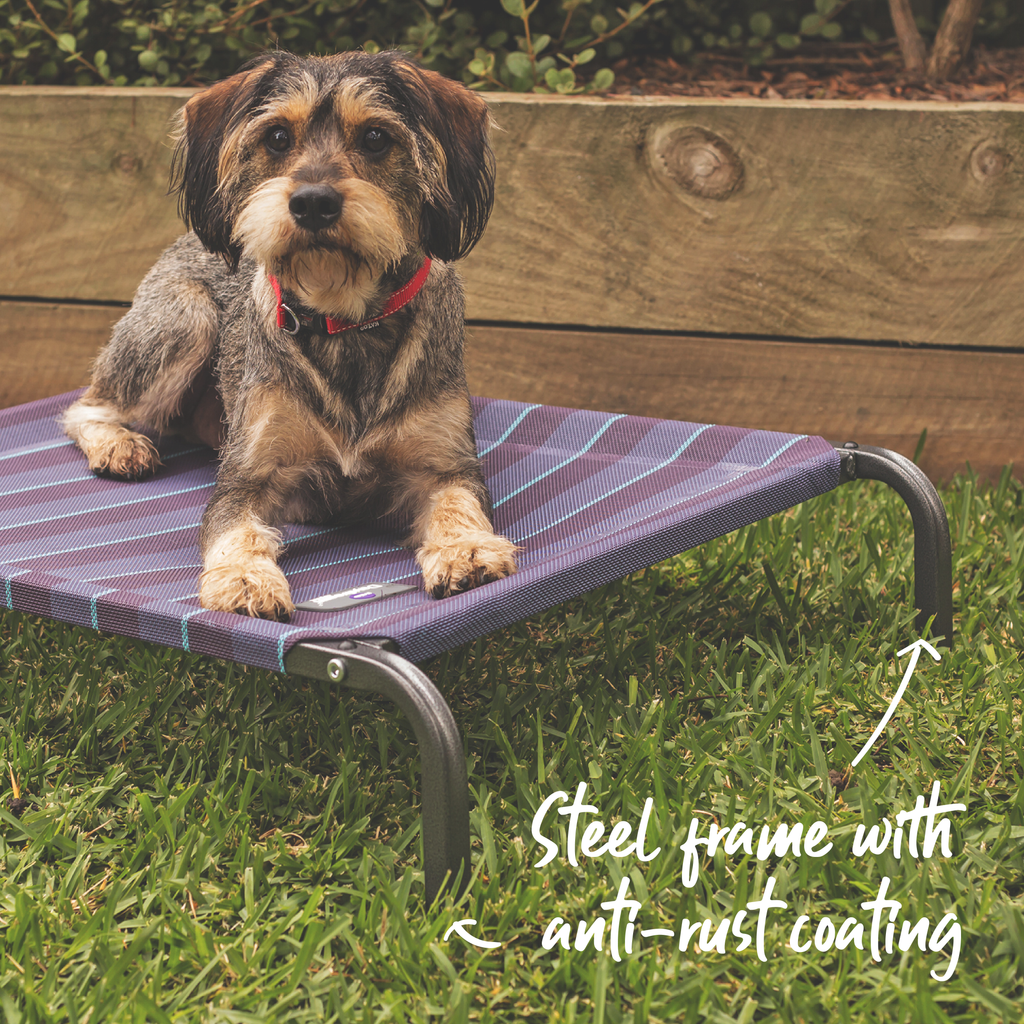 Everyday Outdoor Bed - Kazoo Pet Co