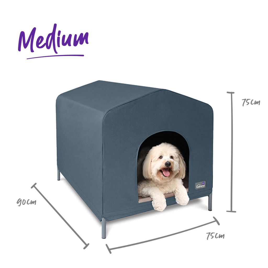 Dog Cabana - Kazoo Pet Co