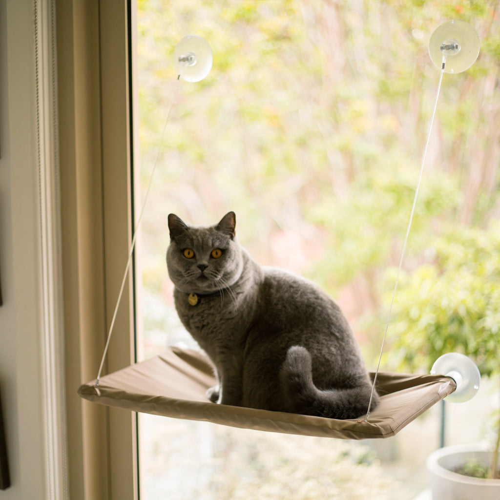 The Lookout Window Cat Bed - Kazoo Pet Co