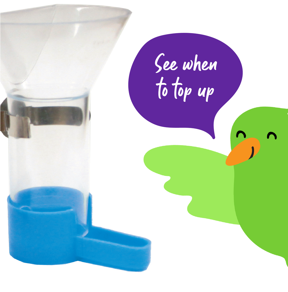 Funnel Feeder - Kazoo Pet Co