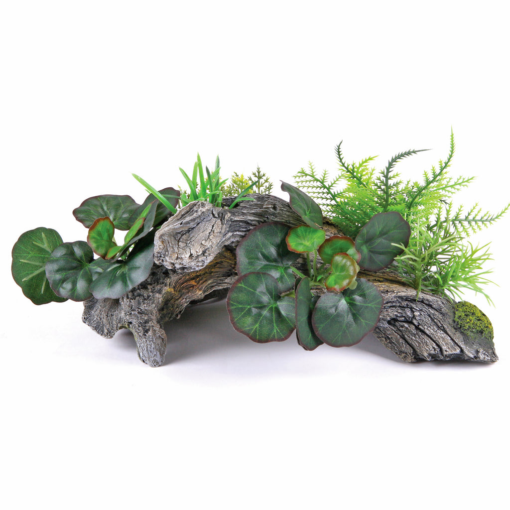 Driftwood with Plants - Medium - Kazoo Pet Co