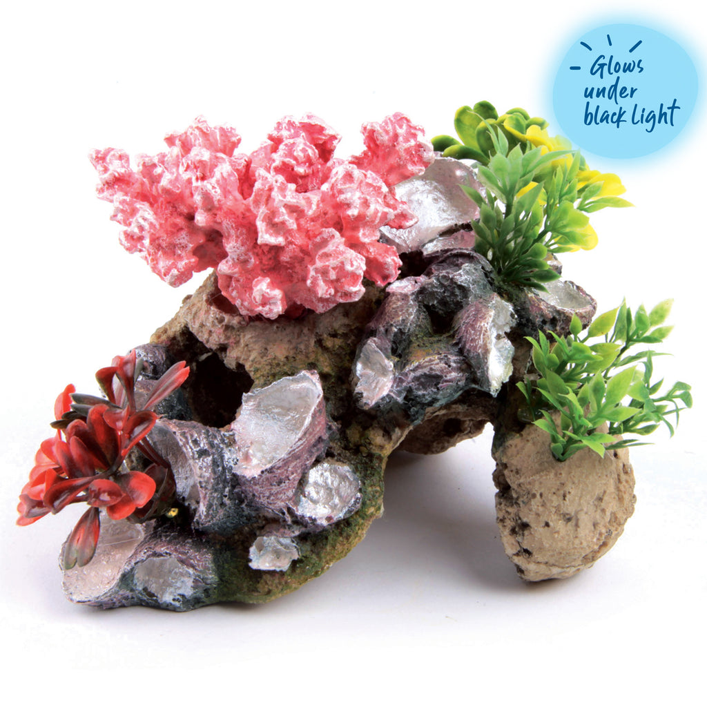 Coral With Rock & Plants - Small - Kazoo Pet Co