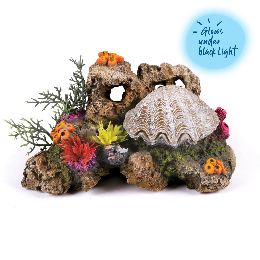 Action Clam With Coral & Plants - Medium - Kazoo Pet Co