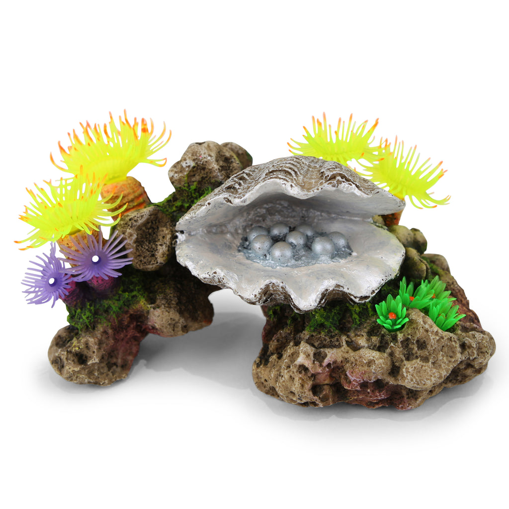 Pearl Clam With Soft Coral & Plants - Medium - Kazoo Pet Co