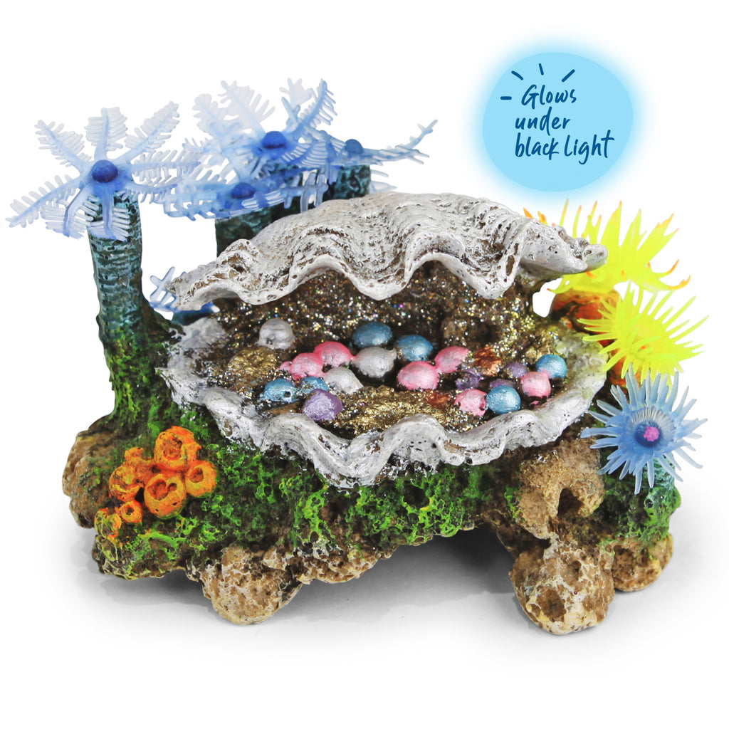 White Clam With Soft Coral & Plants - Small - Kazoo Pet Co