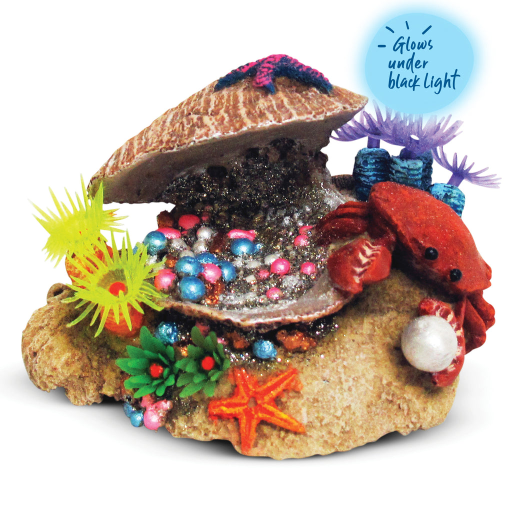 Clam With Soft Coral & Crab - Small - Kazoo Pet Co