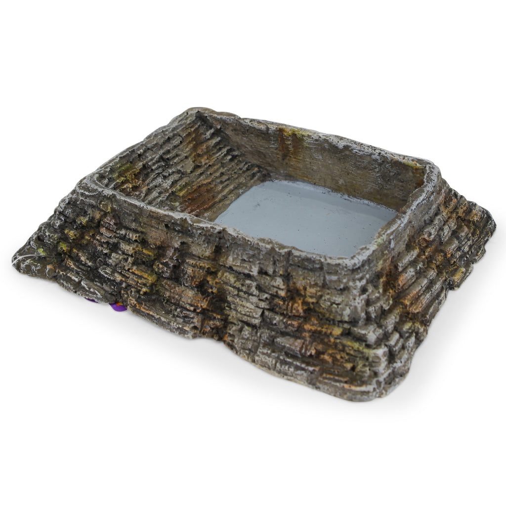 Reptile Feeding Dish - Medium - Kazoo Pet Co