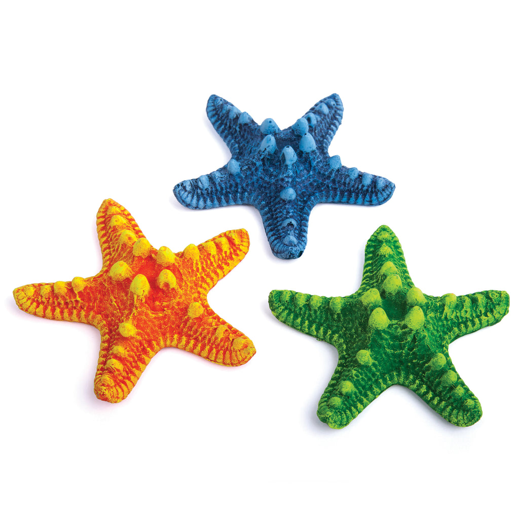 Starfish - 3 Pack Small - Kazoo Pet Co