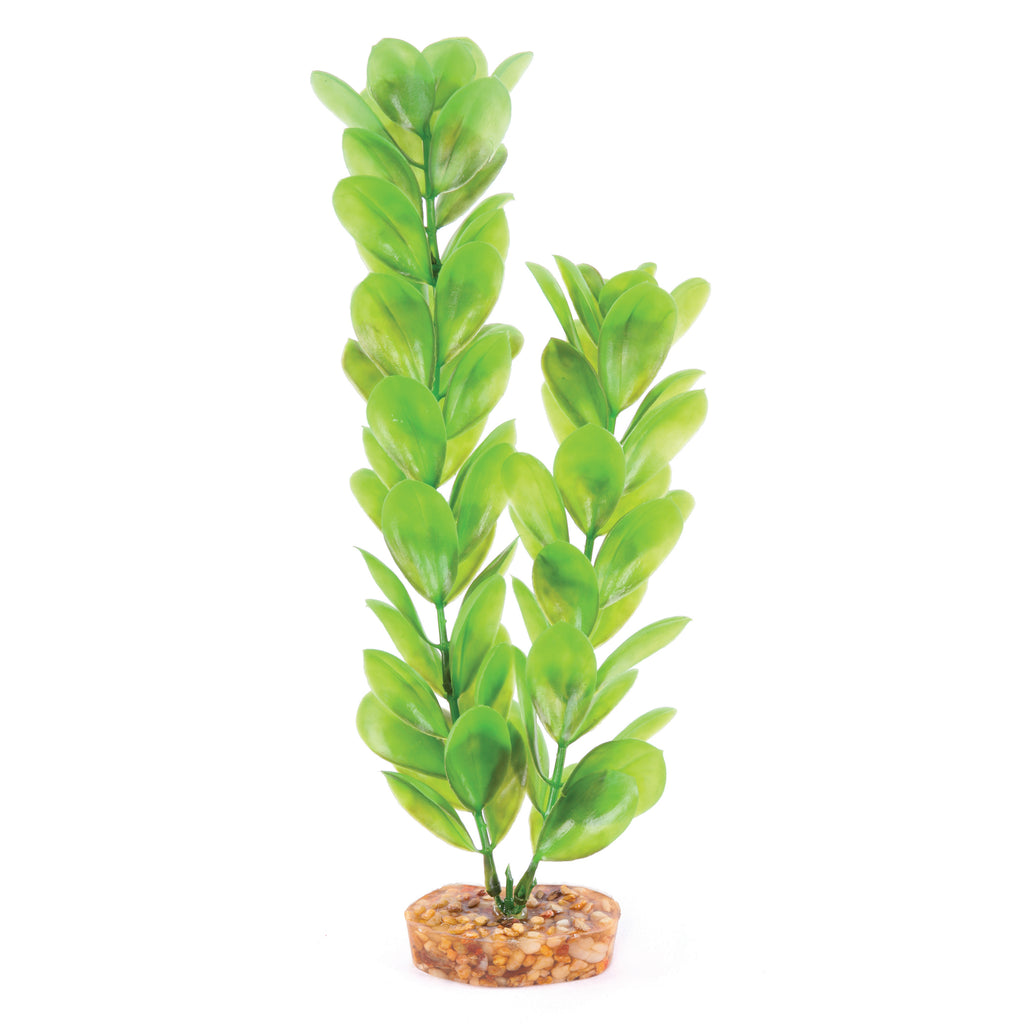 Decorative Plant - Large Leaf Green - Kazoo Pet Co