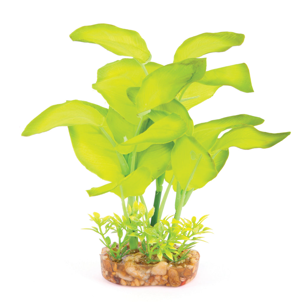 Silk Plant - Large Leaf Green - Kazoo Pet Co