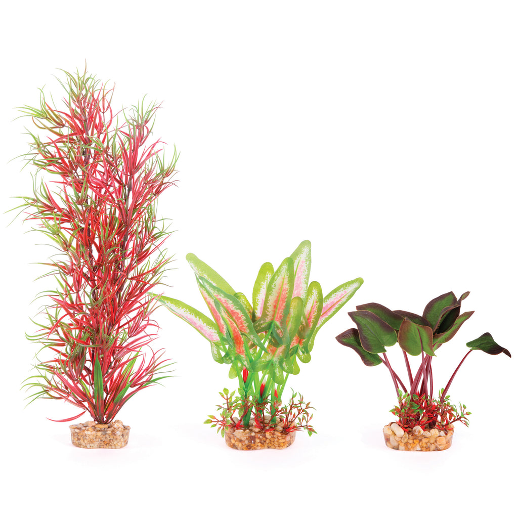 Silk Plant - Multipack #1 - Kazoo Pet Co