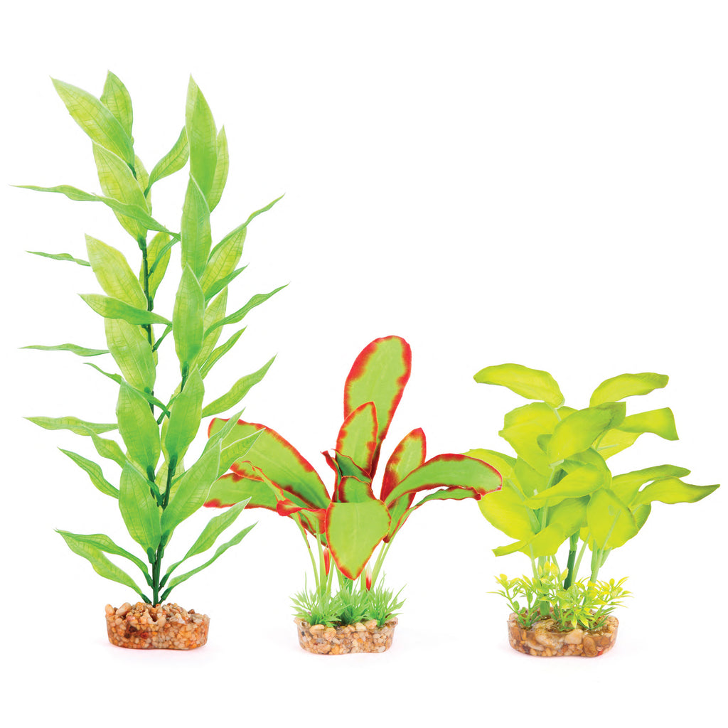Silk Plant - Multipack #2 - Kazoo Pet Co