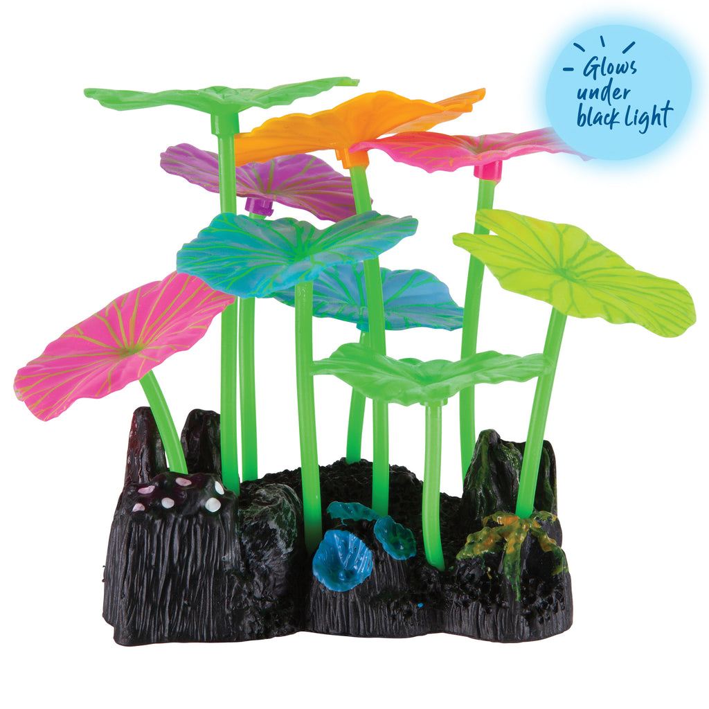 Silicone Long Stem Lily Pad Assorted - Small - Kazoo Pet Co