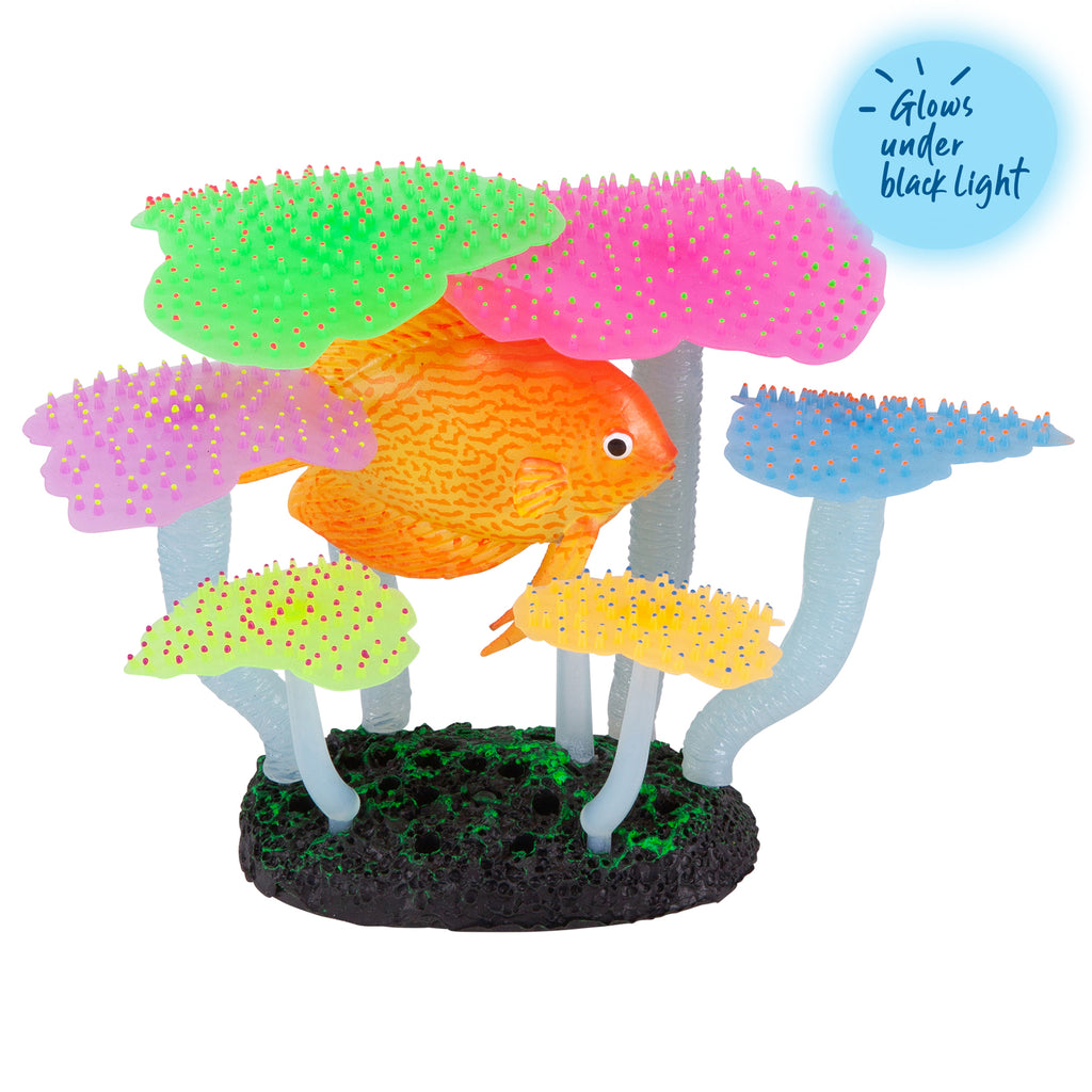 Silicone Fluro Anemone With Discus - Medium - Kazoo Pet Co