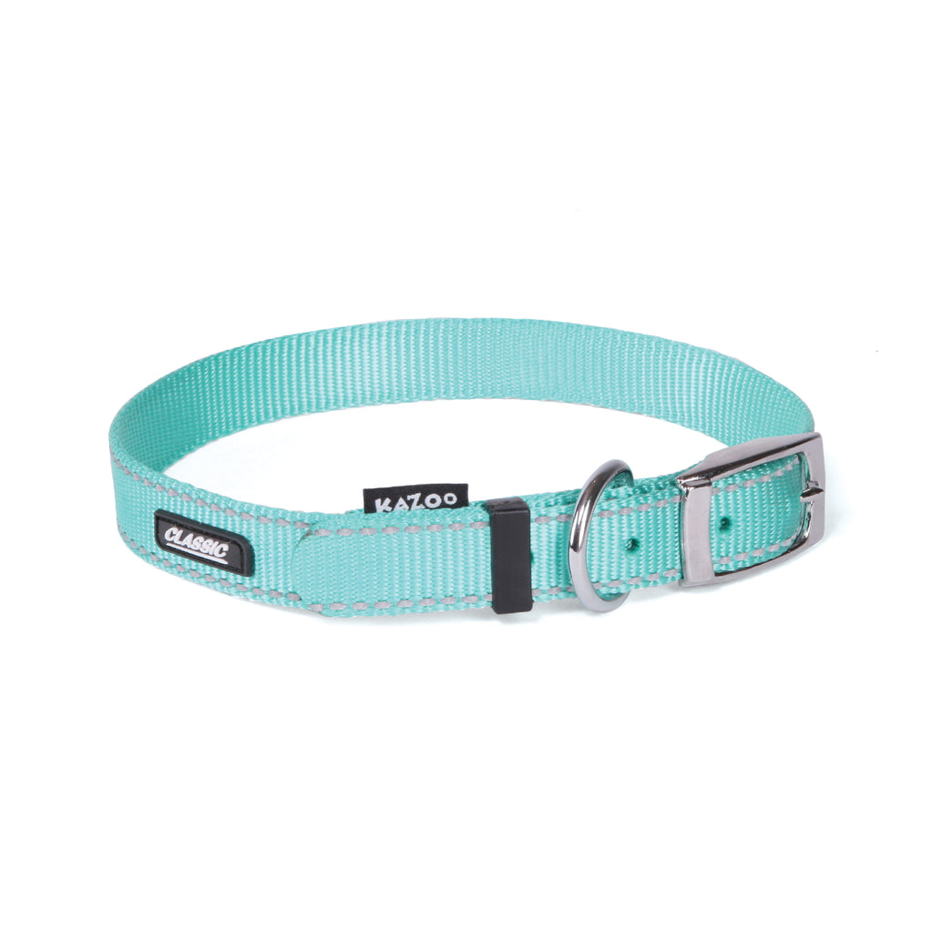 Classic Collar - Mint - Kazoo Pet Co