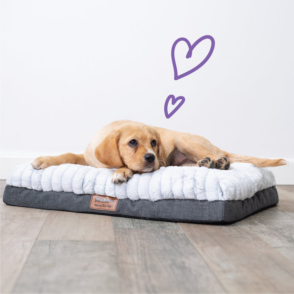 Cloud Comfort Bed - Grey - Kazoo Pet Co