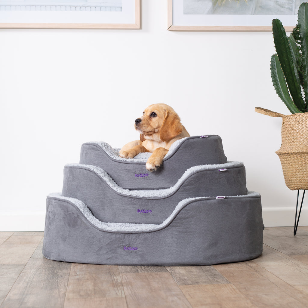 Manhattan Bed - Grey & White - Kazoo Pet Co