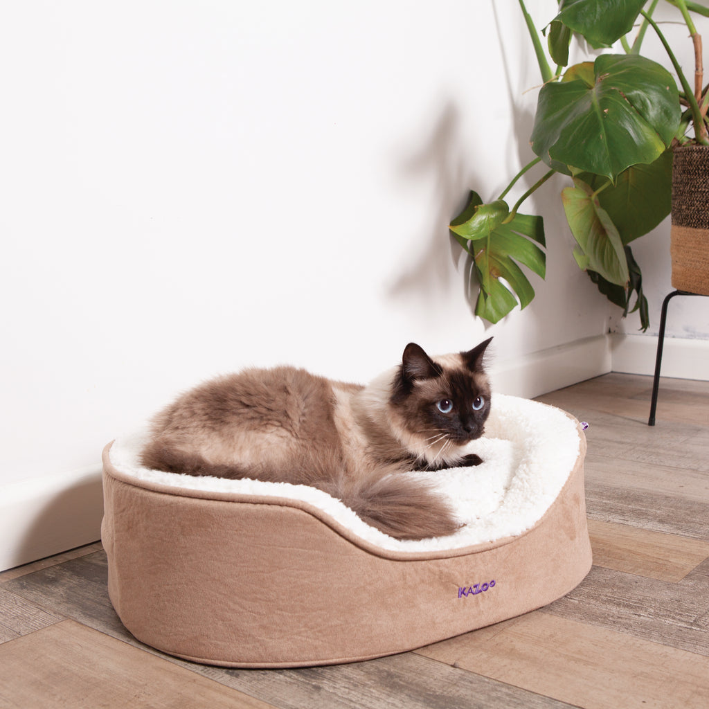 Manhattan Bed - Coffee & White - Cat - Kazoo Pet Co