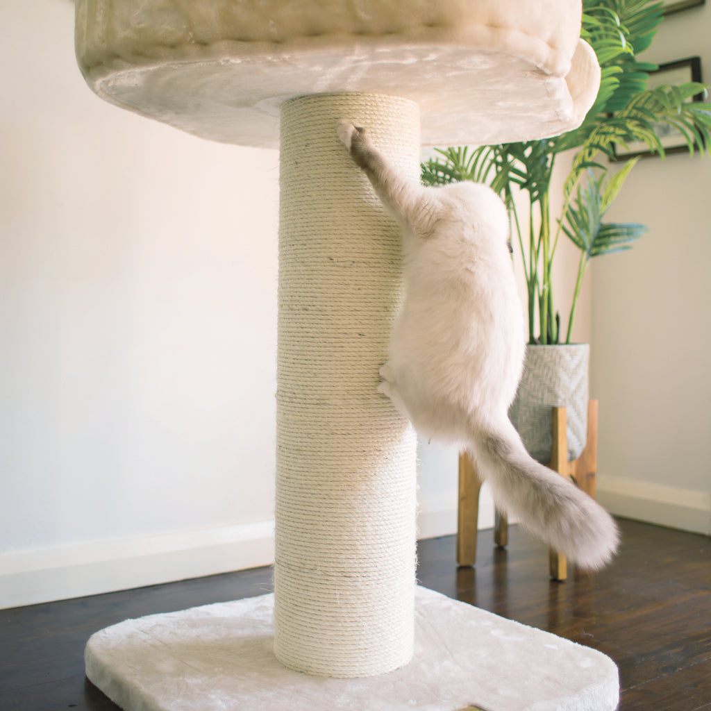 High Bed Scratch Post - Plush - Kazoo Pet Co