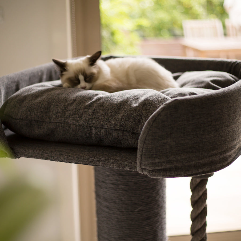 High Bed Scratch Post - Sofa Fabric - Kazoo Pet Co