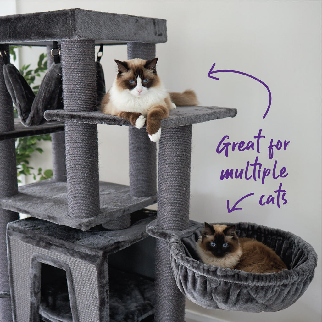 Kitty Tall Cubby Playground