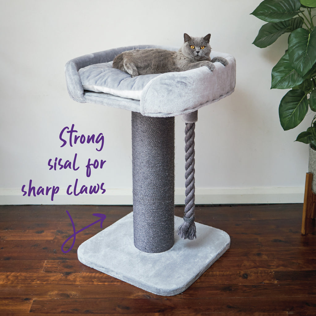 High Bed Scratch Post - Ash Plush