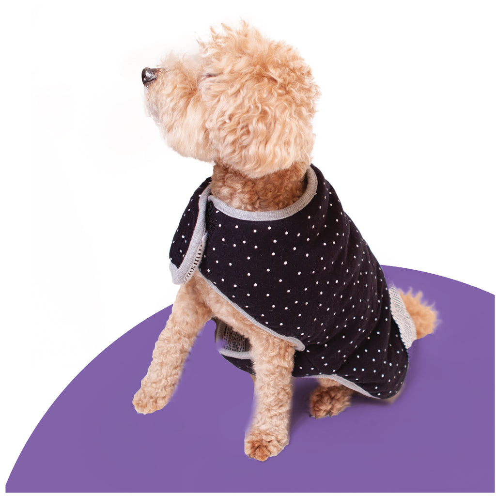 Lamington Reversible Snuggie - Kazoo Pet Co