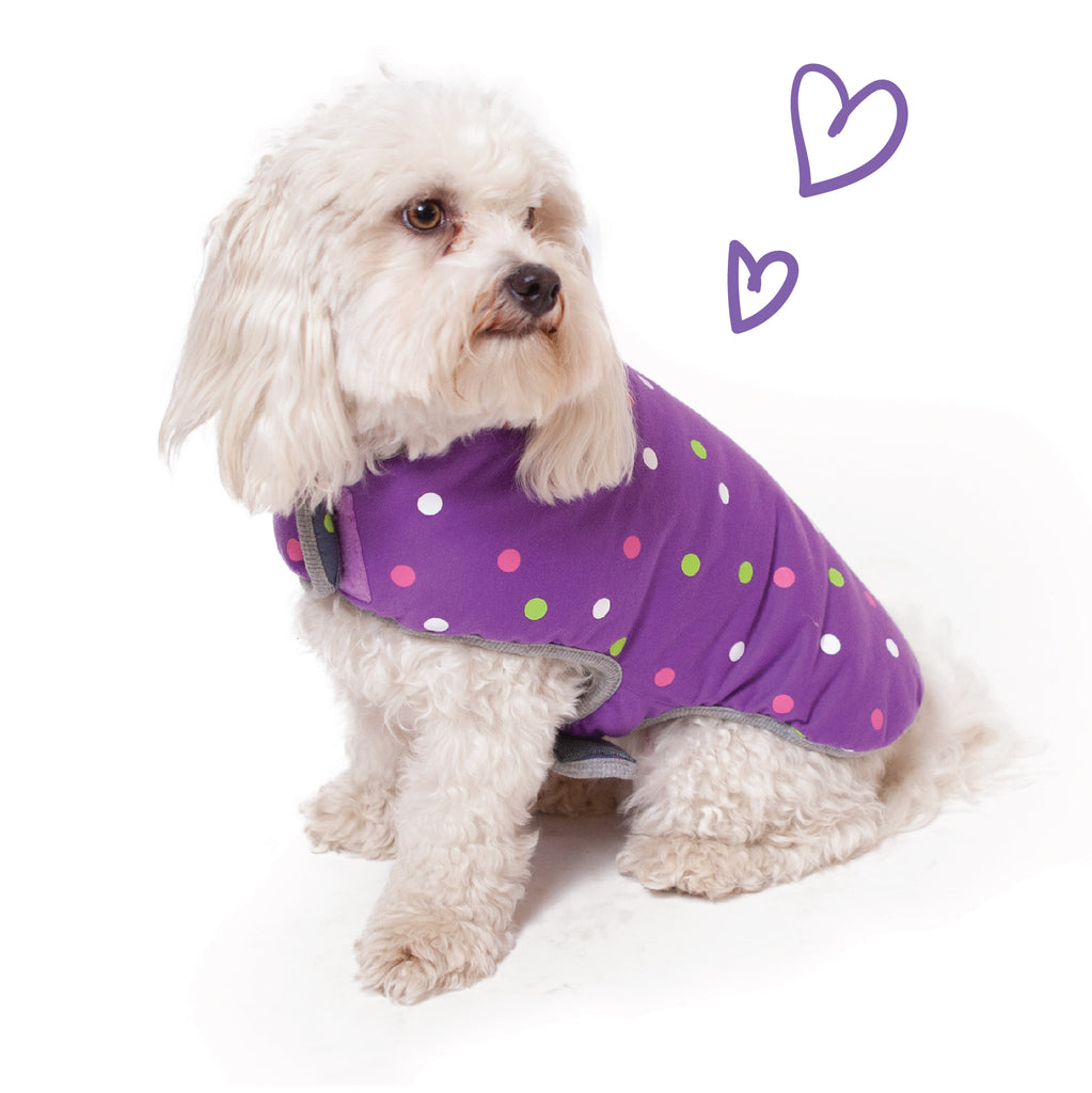 Sprinkles Reversible Snuggie - Purple & Grey - Kazoo Pet Co
