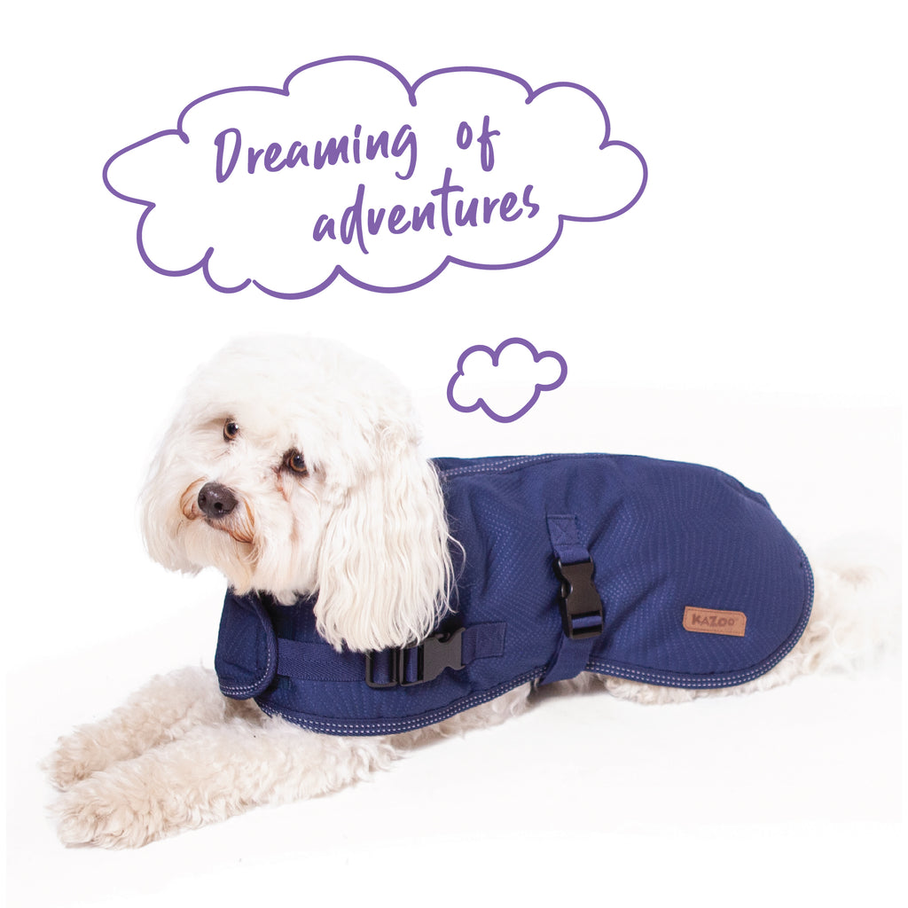 Adventure Coat - Blue - Kazoo Pet Co